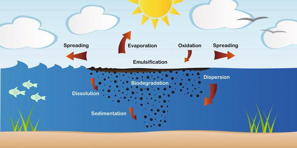 Oil Spill Dispersion Forecasting Models | IntechOpen