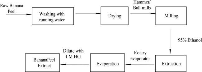 Exploring Musa paradisiaca Peel Extract as a Green Corrosion