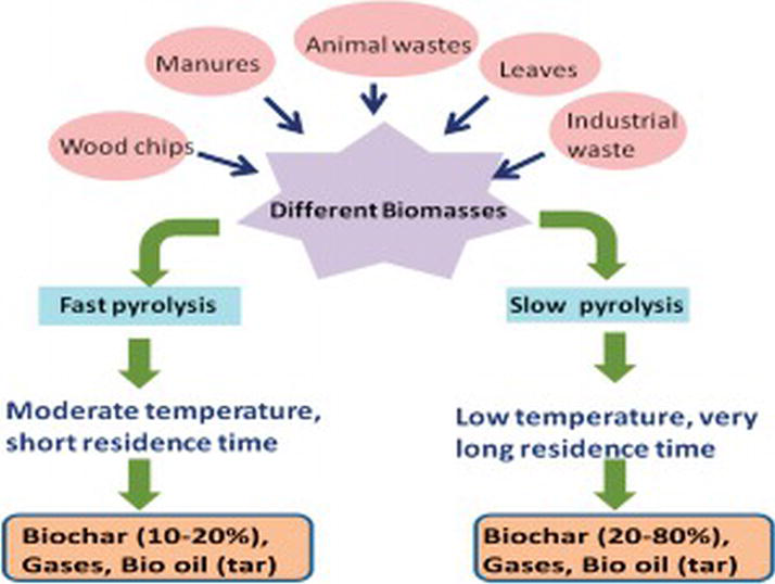 Biochar: A Sustainable Approach for Improving Plant Growth