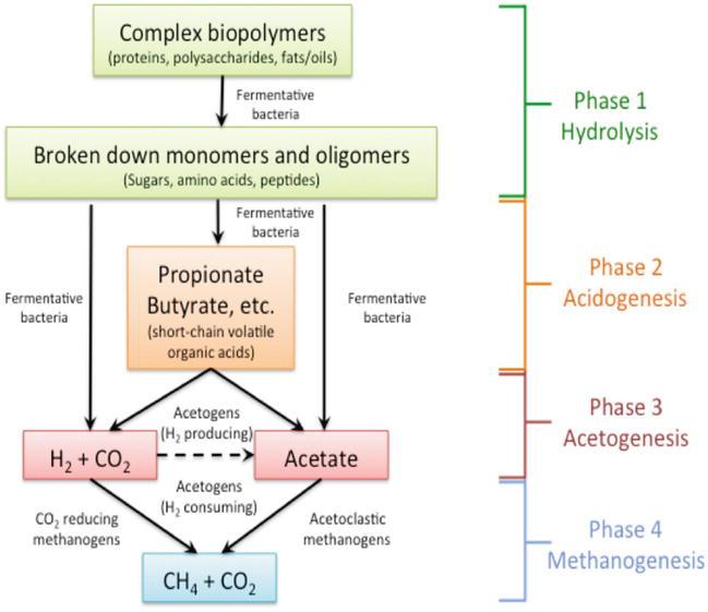Biomass Pretreatment For Enhancement Of Biogas Production
