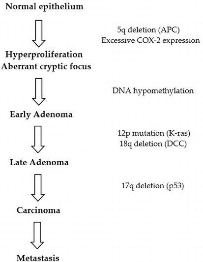 Colon Cancer Intechopen