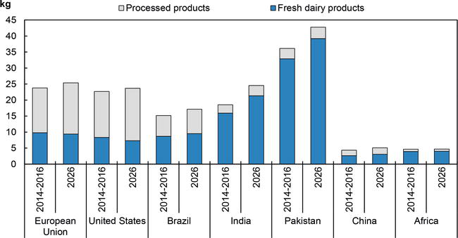Production, Processing, Commercialization and Analysis of Costumer