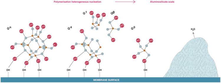 Aqueous Silica and Silica Polymerisation | IntechOpen