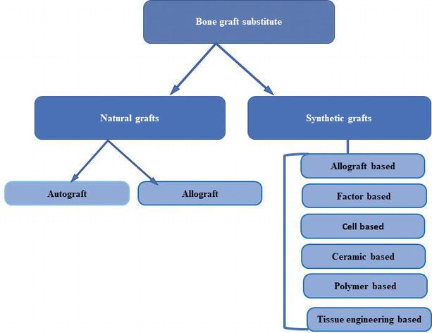 Application Of Bone Substitutes And Its Future Prospective In Regenerative Medicine Intechopen