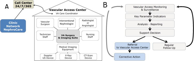 Vascular Access Management for Haemodialysis: A Value-Based Approach
