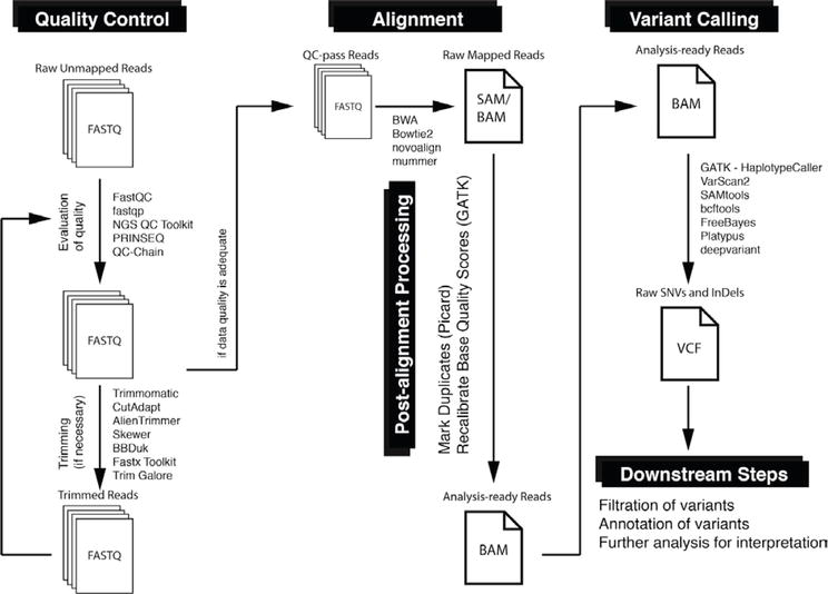 Bioinformatics Workflows for Genomic Variant Discovery