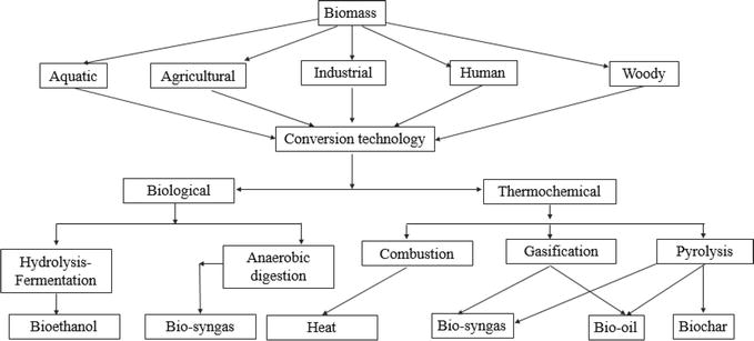 Influence of Process Parameters on Synthesis of Biochar by
