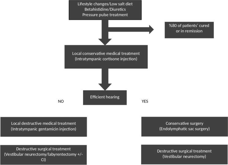 Meniere S Disease Nonsurgical Treatment Intechopen