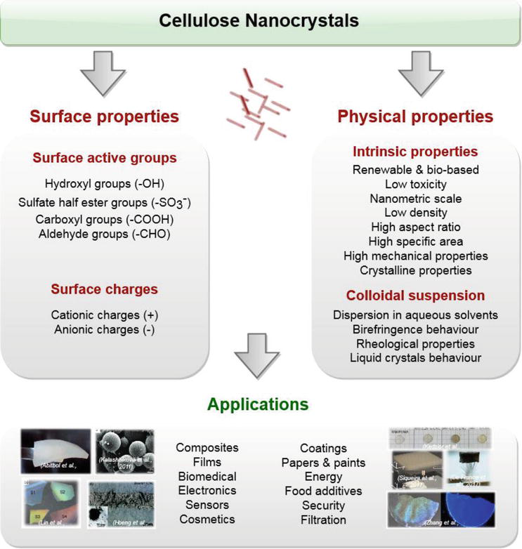 Cellulose Nanocrystals  From Classical Hydrolysis To The